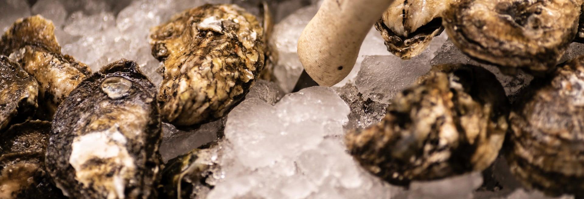 Lynn's Fresh Oysters